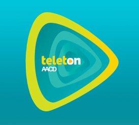 Teleton 2013 (SBT)